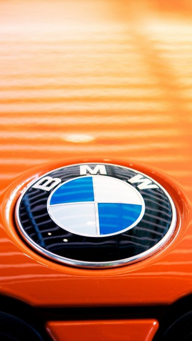 BMW Car Standard Logo