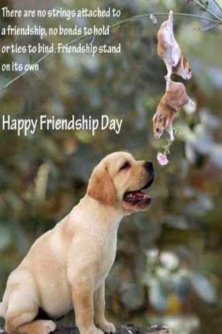 Friendship Day Funny Picture Quote