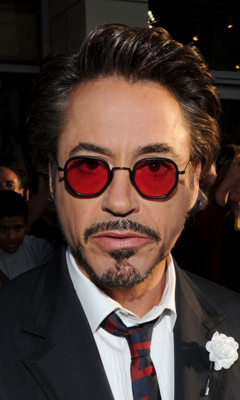 Robert Downey Actor