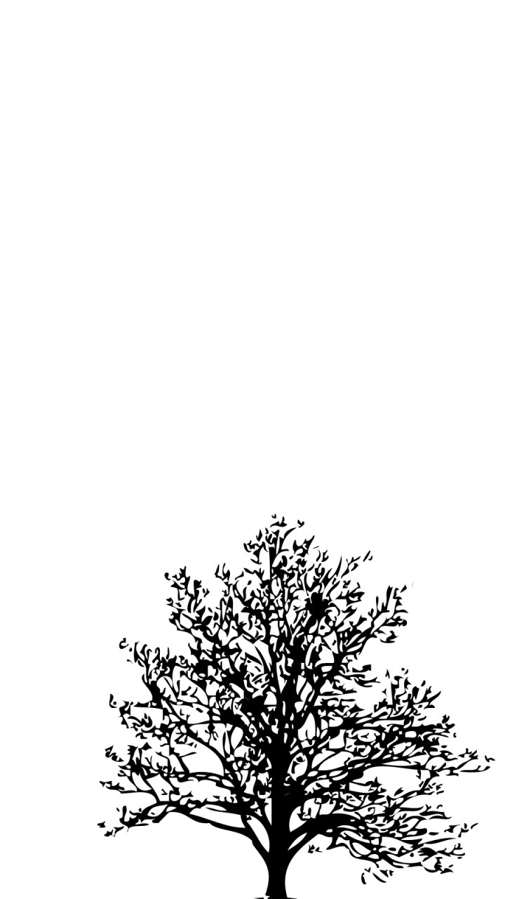 The Black Tree