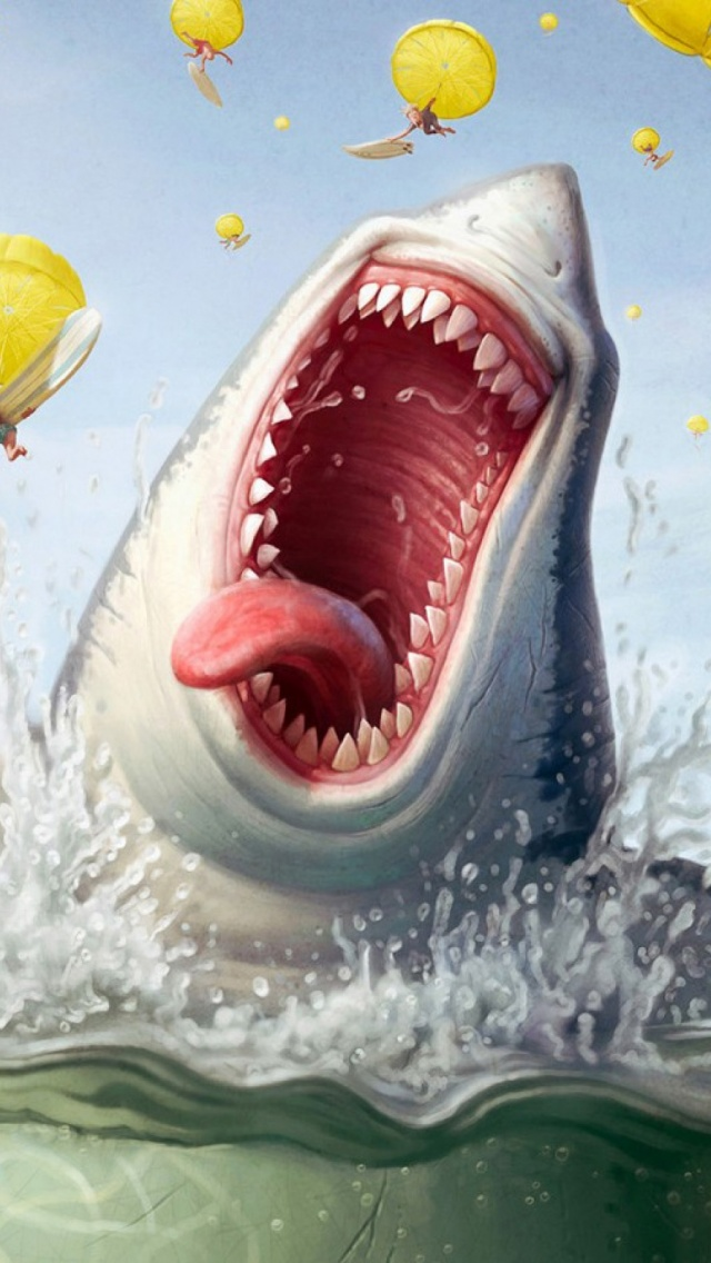 funny shark quotes quotesgram