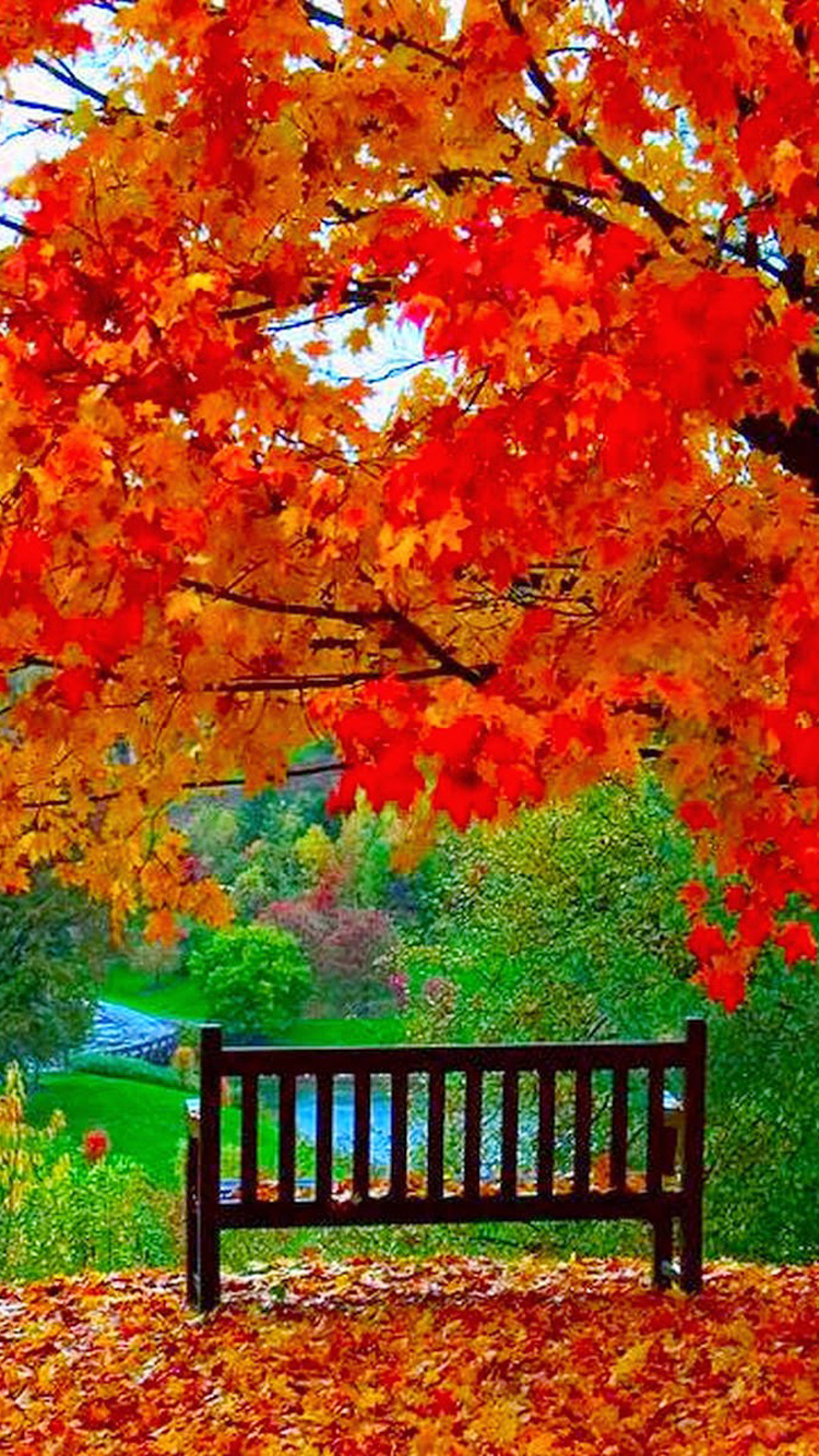 Beautiful Loneliness Bench