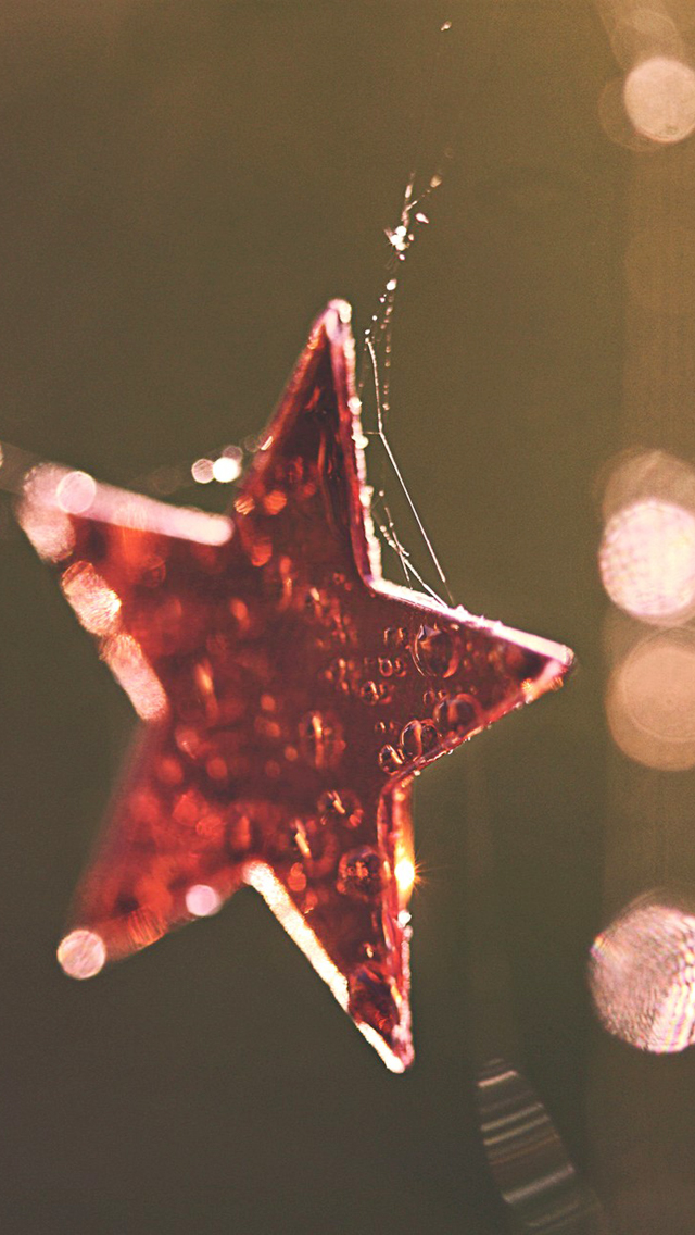 Christmas Red Star