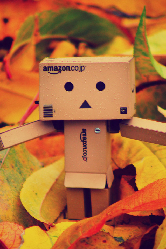 Danbo On Autumn Leaves