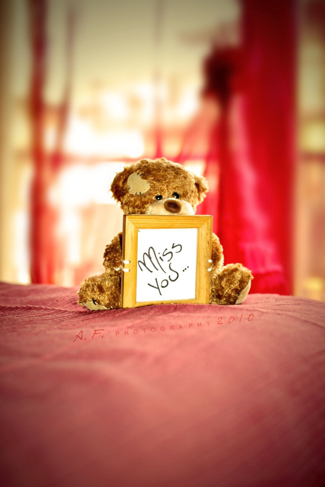 Teddy Miss Someone