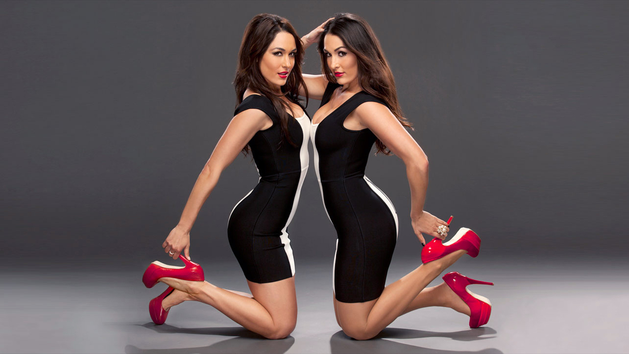 wwe divas the bella twins