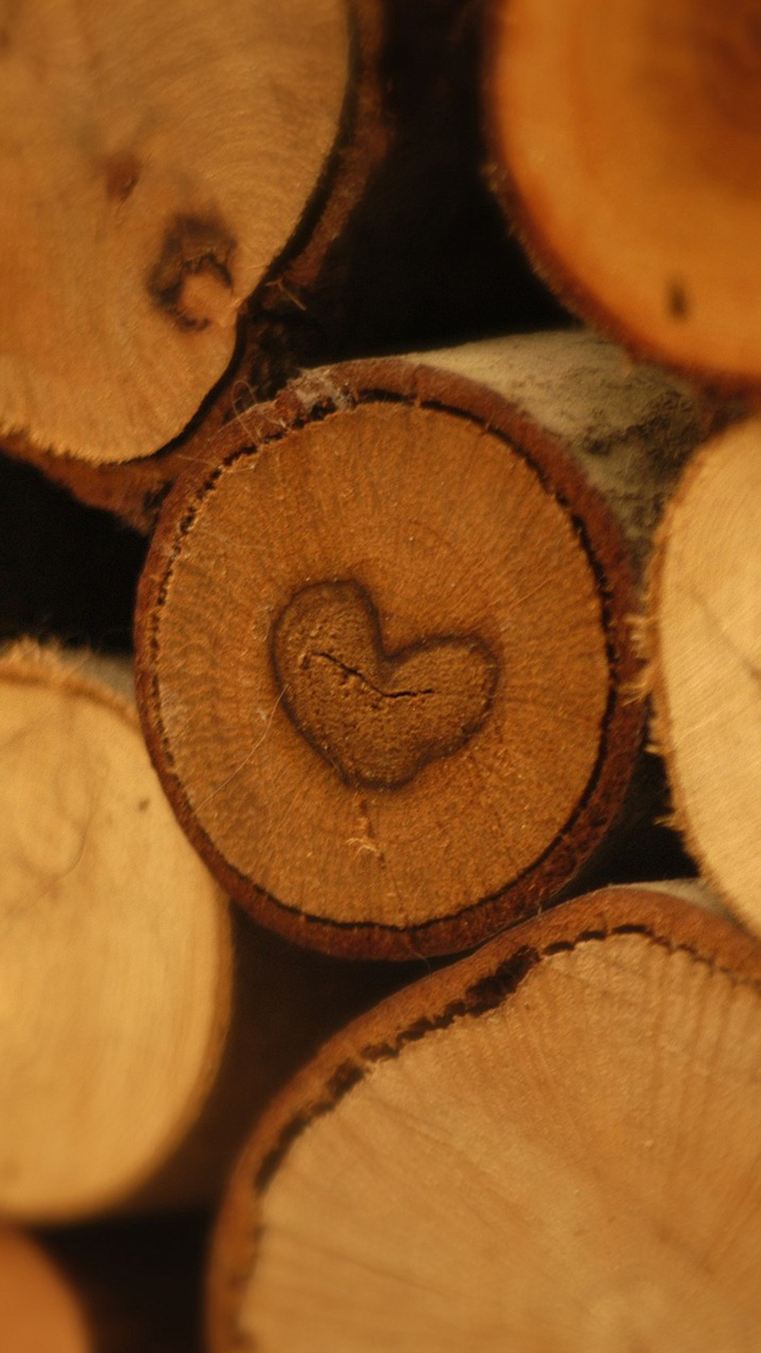 Wood Love Picture