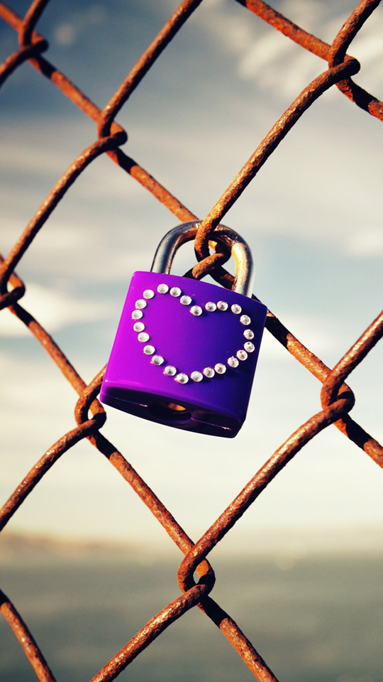 Love Lock Picture