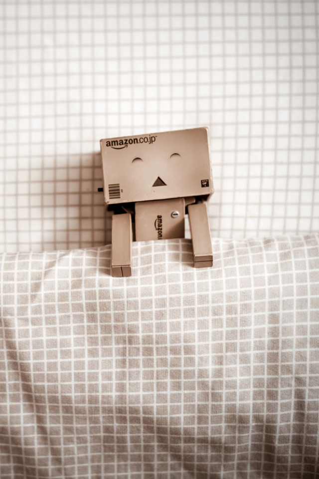 Danbo In Pocket