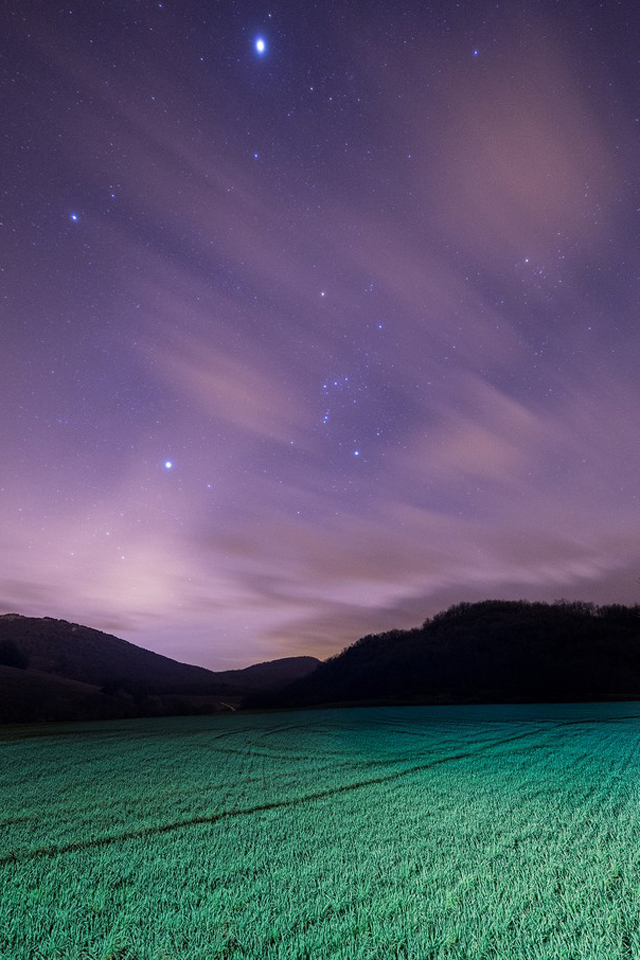 Fields Under Night Sky