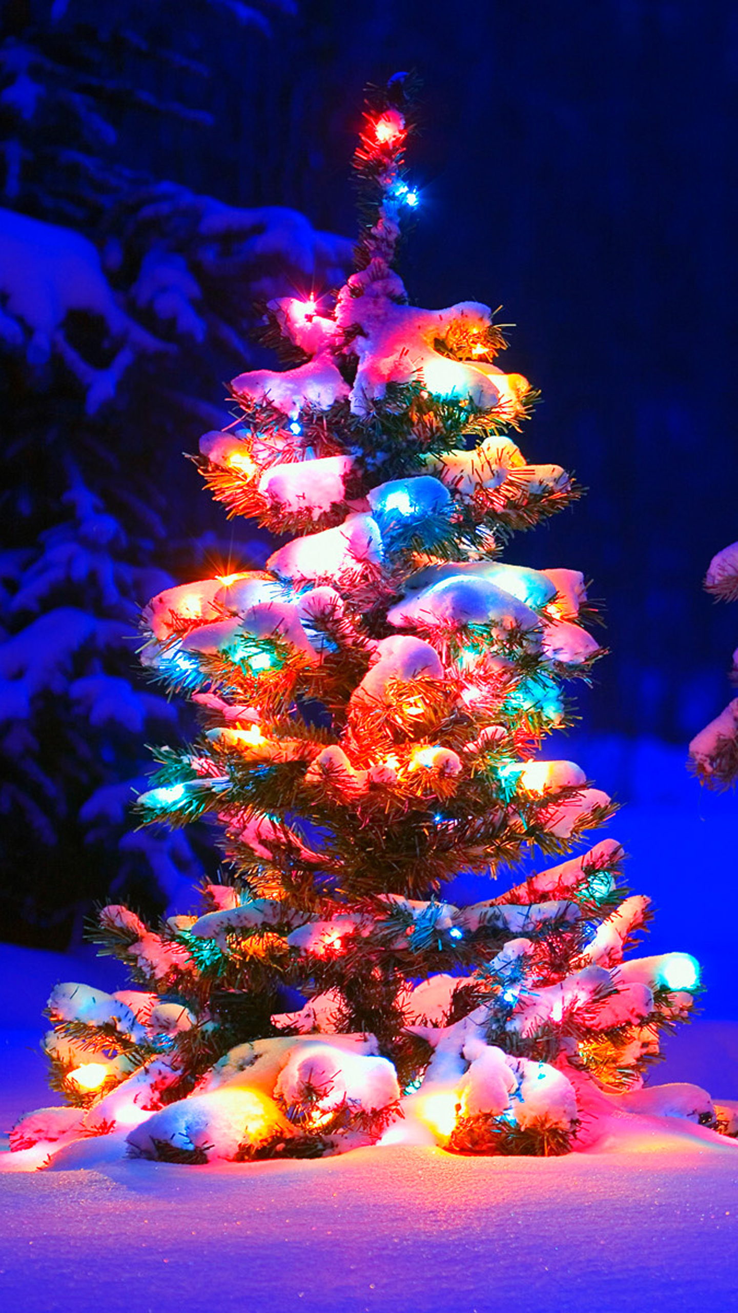 christmas tree lights snow | mobile wallpaper | phone background