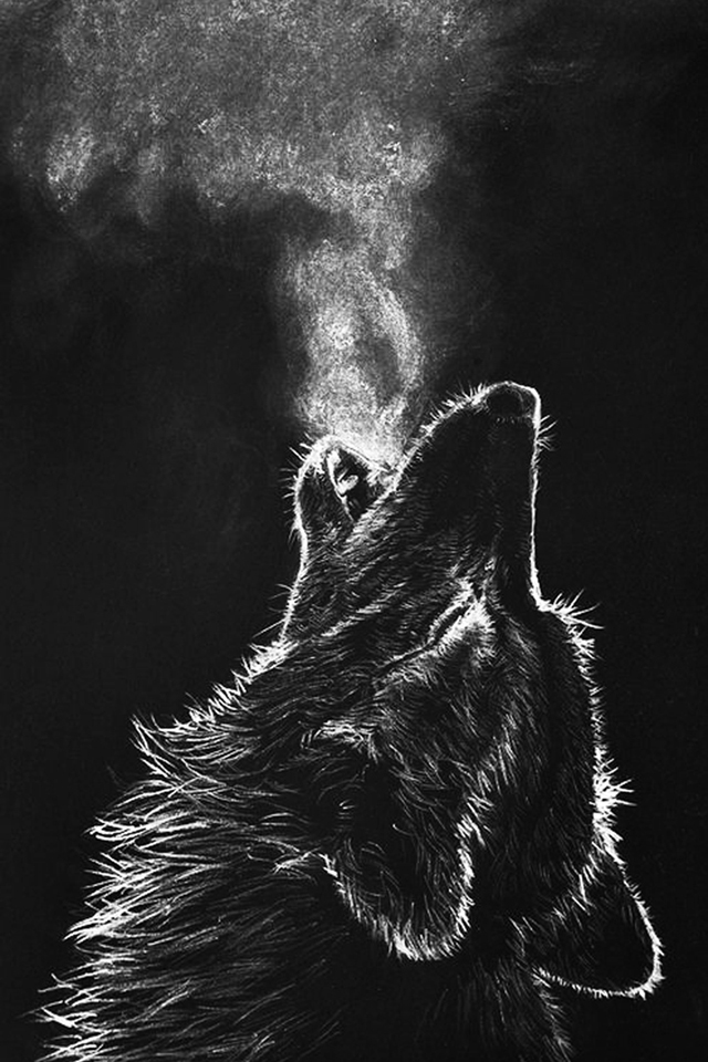 Hot Bg Wolf Wallpaper