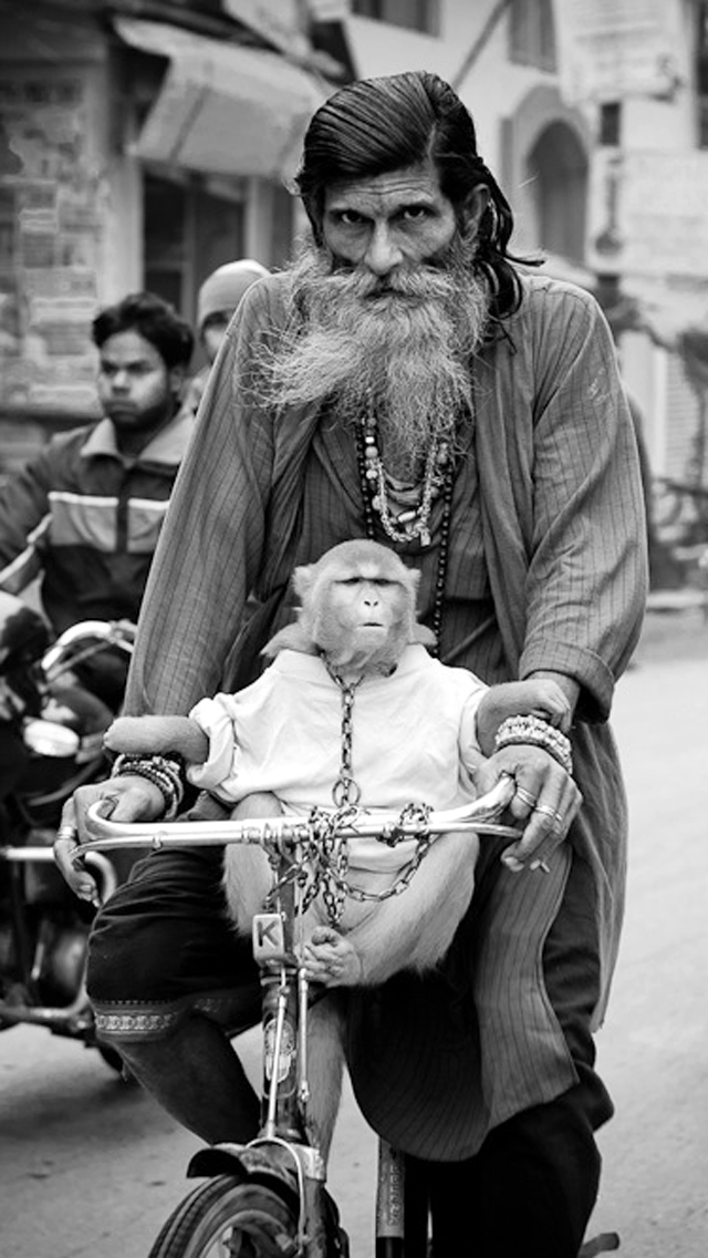 Man & Monkey on Cycle