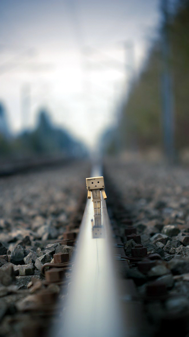 Danbo On Railway Track