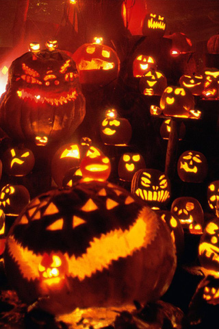 Many Lighted Pumpkin