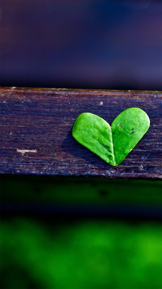Love Leaf Wallpaper