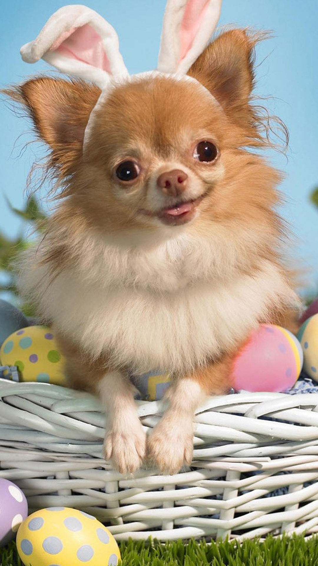 Easter Puppy Basket