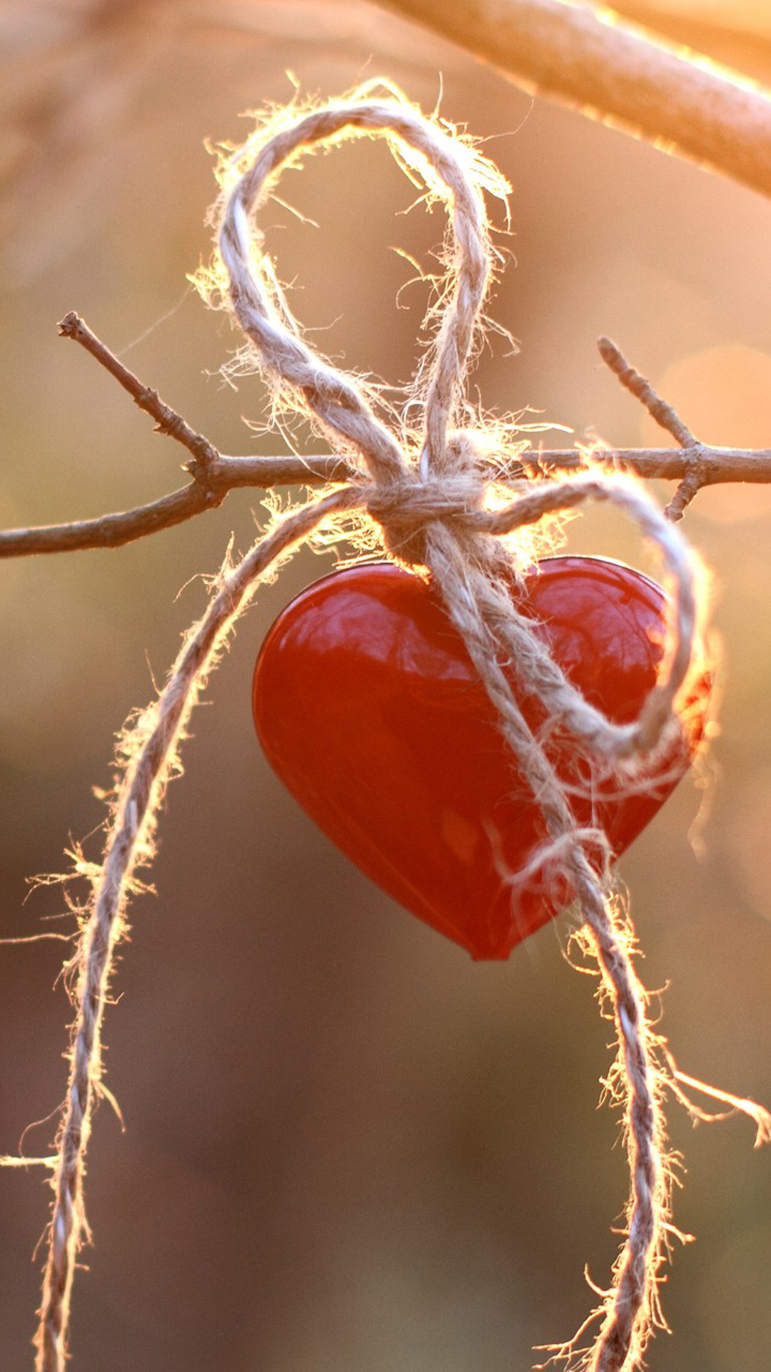 Heart Hanging On Tree