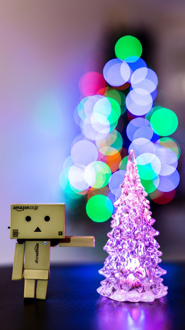 Danbo With His First Christmas Tree