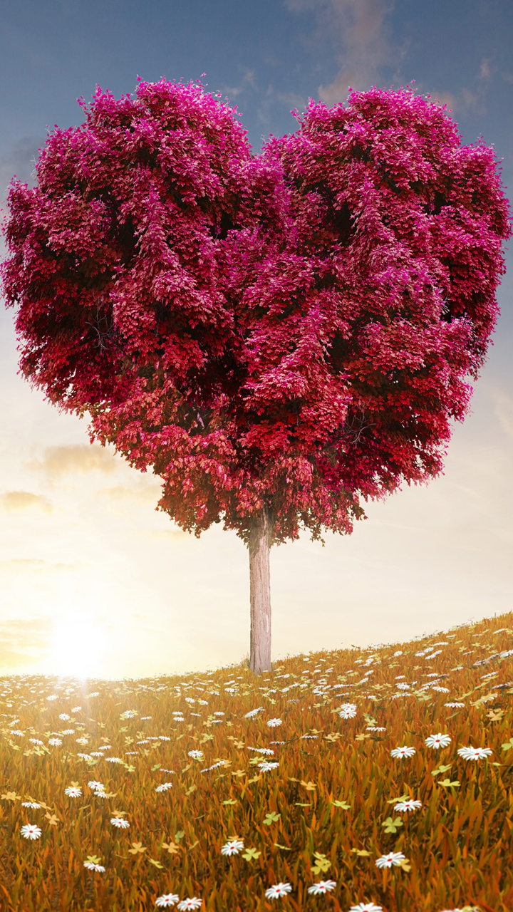 Heart Tree Love Picture