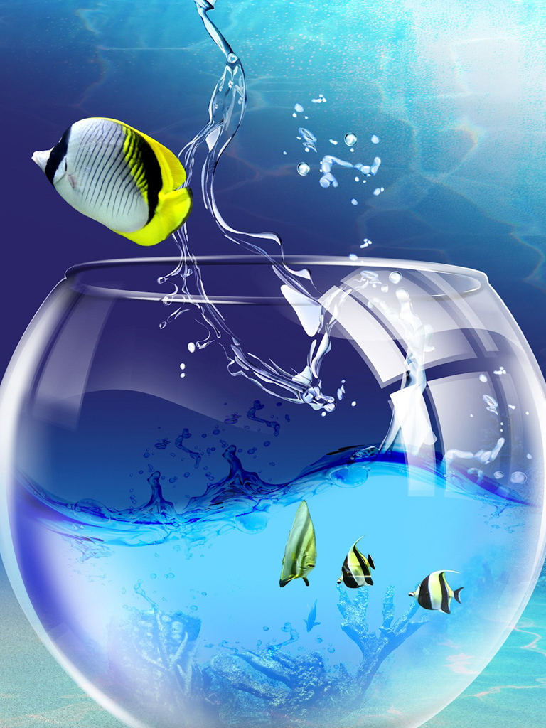 HD Aquarium Fish 3D